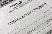 Birth Certificate for live baby born  poster