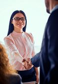 Business Woman Shaking Hands With A Partner. Successful Deal Is Finished, Partners Concluding A Deal poster