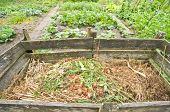 Compost bin in a vegetable garden