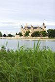 Schwerin Castle and lake, reed in foreground