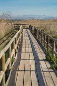 Natural Park Footbridge