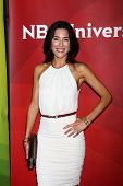 LOS ANGELES - APR 22:  Jaime Murray at the NBCUniversal Summer Pres Day 2013 at the Huntington Langh