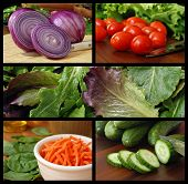 Colorful collage of fresh salad ingredients includes red onions, grape tomatoes, lettuce, baby green