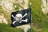 Skull & Crossbones  On Flag