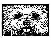 Furry Puppy Dog Face - Retro Clip Art Illustration