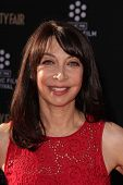 LOS ANGELES - APR 25:  Illeana Douglas arrives at the TCM Classic Film Festival Opening Night Red Ca
