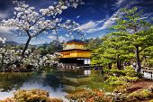 gold temple japan
