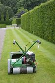 Lawnmower Against Of Background Of Hedge In English Garden