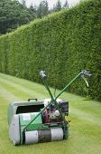 Lawnmower Against Of Background Of Hedge