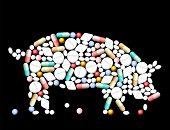 Tablets Pills Pig