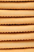 Background of stake saltine soda cracker.