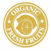 Lemon Fruit Stamp Or Label