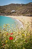 Beach In Mykonos, Greece
