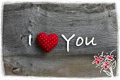 stock photo of elm  - I love you Valentine - JPG