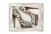 Animal Print High Heel Shoes In Box