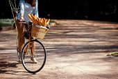 Woman Riding The Bicycle With The Basket Full Of Baguettes On The Alley In The Park