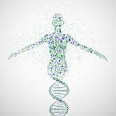 image of dna  - Abstract model of woman of DNA molecule - JPG