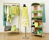 Dressing closet with green clothes arranged on hangers and shelf.