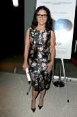 LOS ANGELES - MAY 8:  Julia Louis-Dreyfus at the