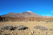 stock photo of canary-islands  - Desert Landscape in Volcan Teide National Park - JPG