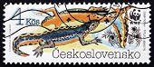 Postage Stamp Czechoslovakia 1989 Alpine Newt, Amphibians