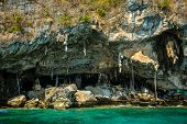Viking cave where bird's nests are collected. Phi-Phi Leh island in Krabi, Thailand.