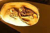 picture of burial  - ANKARA TURKEY  - JPG