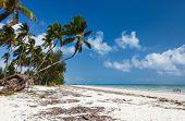Traditional coastal village and white sand tropical beach on Zanzibar island