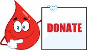 Red Blood Drop Cartoon Mascot Character Showing A Blank Sign With Text Donate