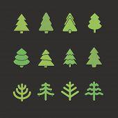 Different christmas tree set. Design elements
