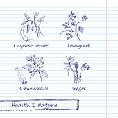 Handdrawn Illustration - Health and Nature Set