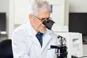 Confident senior male scientist looking into microscope in laboratory