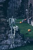 Skeletons at abbey ruins for Halloween