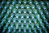 Wine bottles rows background