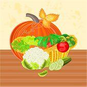 Basket With Vegetables And Pumpkins Vector
