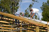foto of rafters  - Two roofers use screw-guns to bolt corrugated metal sheets to the roof rafters of a barn under construction. ** Note: Slight graininess, best at smaller sizes - JPG