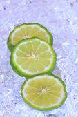Kaffir Limes On Ice  - Stock Image