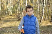 Little Serious Boy In Autumn Forest.