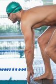 Side view of a fit swimmer about to dive into the pool at leisure center