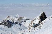 Skiers Skiing On Piste