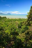 stock photo of malaysia  - Tropical landscape over jungle and hills malaysia borneo - JPG