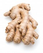 foto of rhizomes  - Fresh ginger root or rhizome isolated on white background cutout - JPG