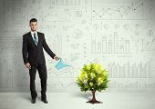 stock photo of lightbulb  - Business man pouring water on lightbulb growing tree concept - JPG