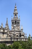 image of gothic  - Part of Seville gothic cathedral Andalusia Spain  - JPG