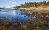 image of inlet  - Beautiful shoreline in the New England state of Maine - JPG