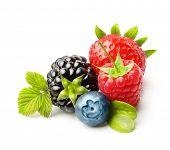 foto of berries  - Summer berry fruits - JPG