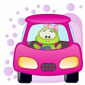 picture of cute frog  - Cute Frog girl is sitting in a car - JPG
