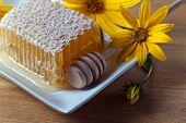pic of jerusalem artichokes  - honeycombs and flowers of Jerusalem artichoke on a wooden table - JPG