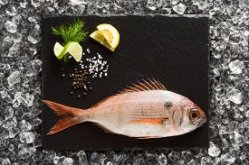 foto of red snapper  - Fresh red snapper fish on a black stone plate top view - JPG