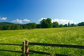 Meadow with fence and blue sky.